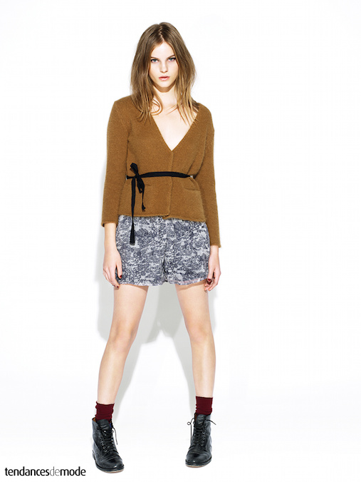 Collection Swildens - Automne/hiver 2011-2012 - Photo 8