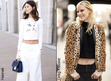 Tendance cropped